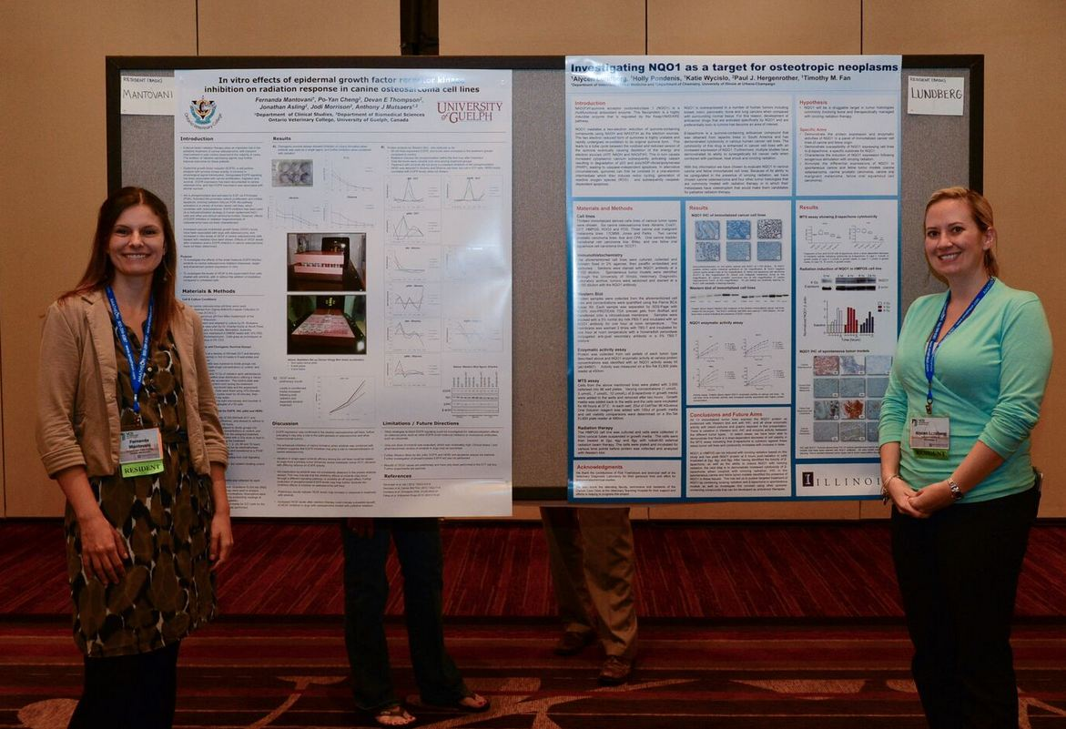 poster presentation abstract